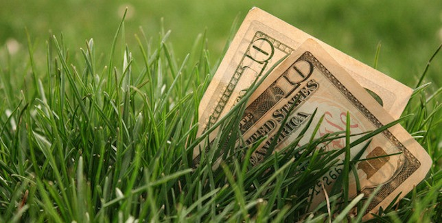 Get Affordable Lawn Care by GreenPal 5